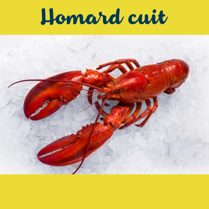 Homards cuits